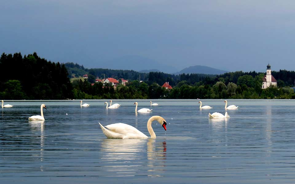 Lechbruck am See Impression